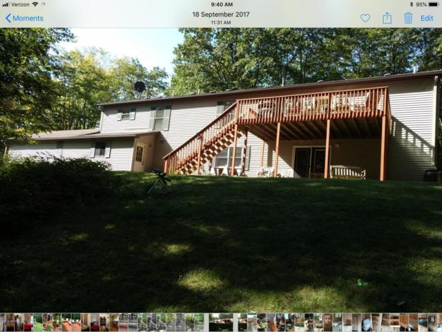 15872 Deer Run, Leroy, MI 49655 (MLS #18021673) :: Carlson Realtors & Development