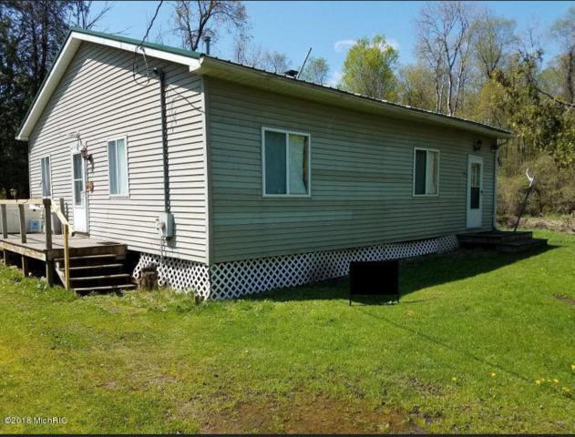 16815 Riverbank Lane, Leroy, MI 49655 (MLS #18023230) :: CENTURY 21 C. Howard