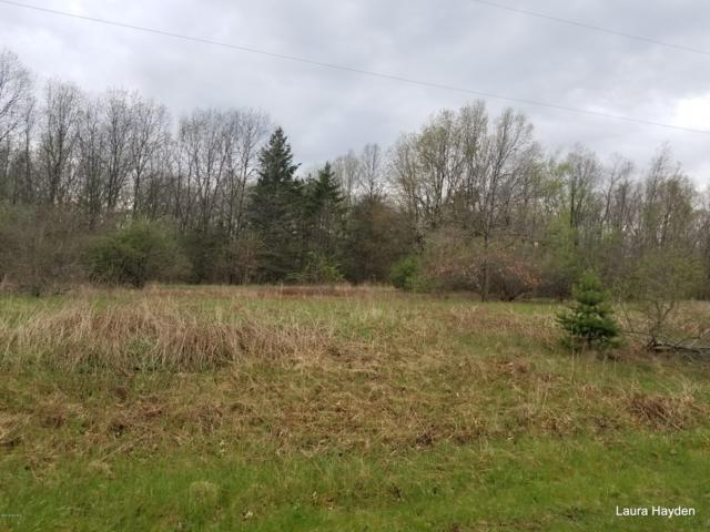 Vising Drive Lot 5, Lowell, MI 49331 (MLS #14011604) :: Ginger Baxter Group
