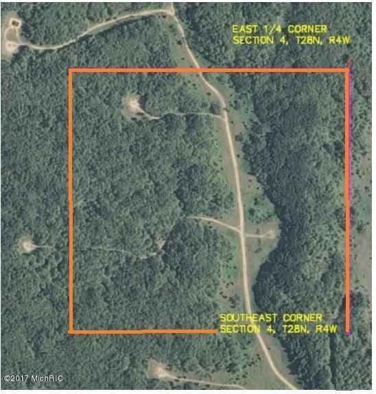 V/L-Parcel 3 Twin Peaks Road, Frederic, MI 49733 (MLS #17019742) :: Carlson Realtors & Development