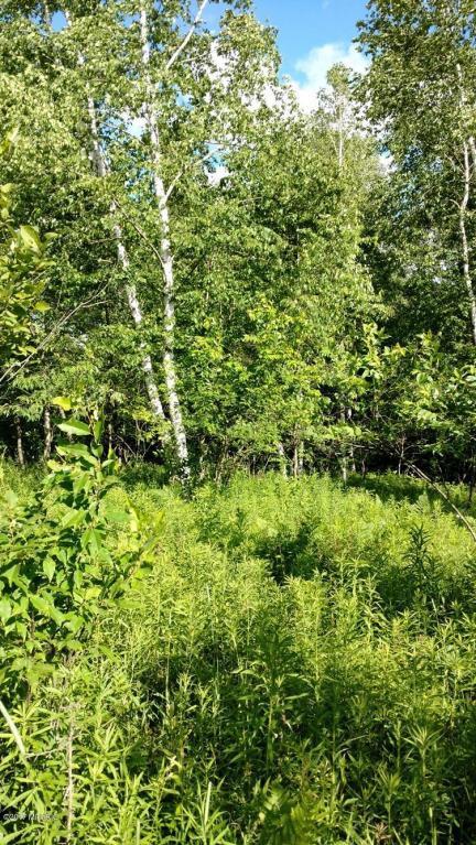 00 Hunter Ridge Drive, Marion, MI 49665 (MLS #17031518) :: Deb Stevenson Group - Greenridge Realty