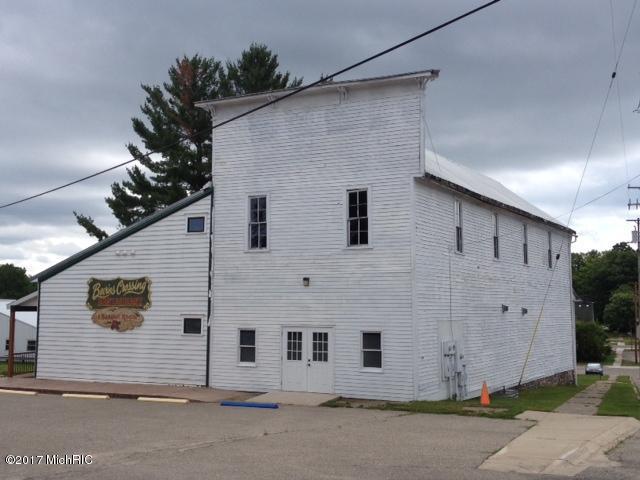 104 E Main Street, Leroy, MI 49655 (MLS #17035888) :: Deb Stevenson Group - Greenridge Realty