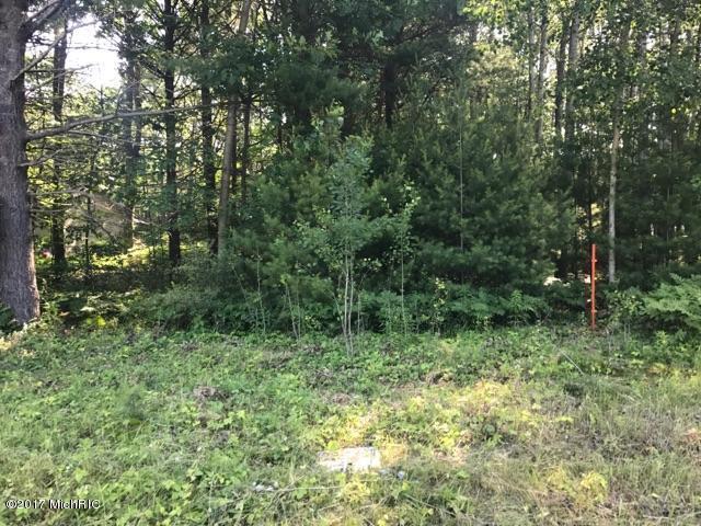 N Jebavy Drive, Ludington, MI 49431 (MLS #17036200) :: Deb Stevenson Group - Greenridge Realty