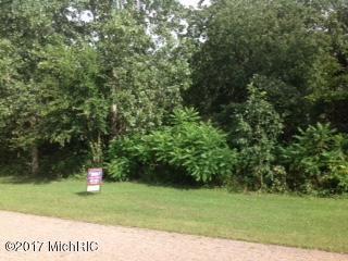 1662 Prairiewood Court #17, Otsego, MI 49078 (MLS #17041029) :: Matt Mulder Home Selling Team