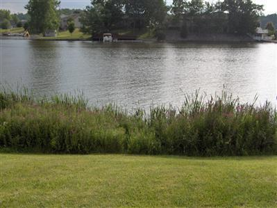 14670 W Diane Drive, Camden, MI 49232 (MLS #17045704) :: Ginger Baxter Group