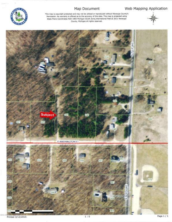 Lot G E Washington Street, White Cloud, MI 49349 (MLS #17046517) :: 42 North Realty Group