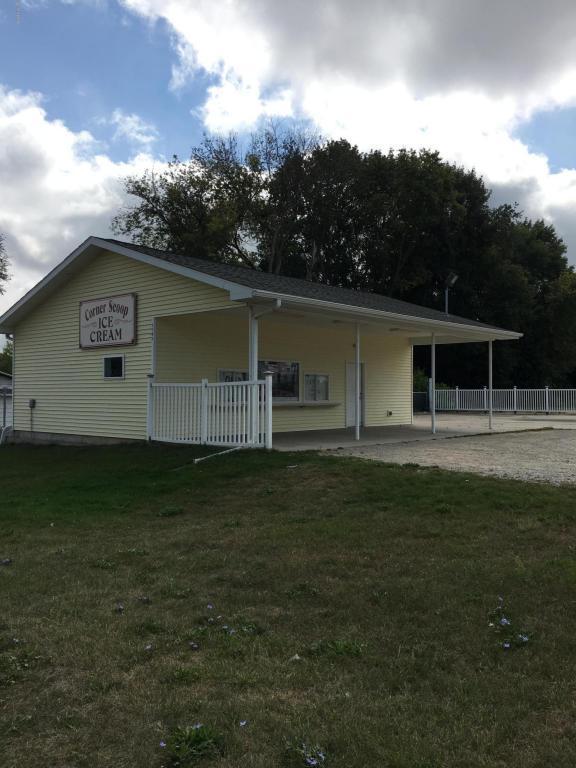 1063 W Lincoln Avenue, Ionia, MI 48846 (MLS #17047385) :: Deb Stevenson Group - Greenridge Realty