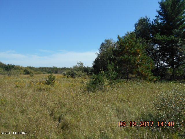N Stiles Road, Scottville, MI 49454 (MLS #17047649) :: Deb Stevenson Group - Greenridge Realty