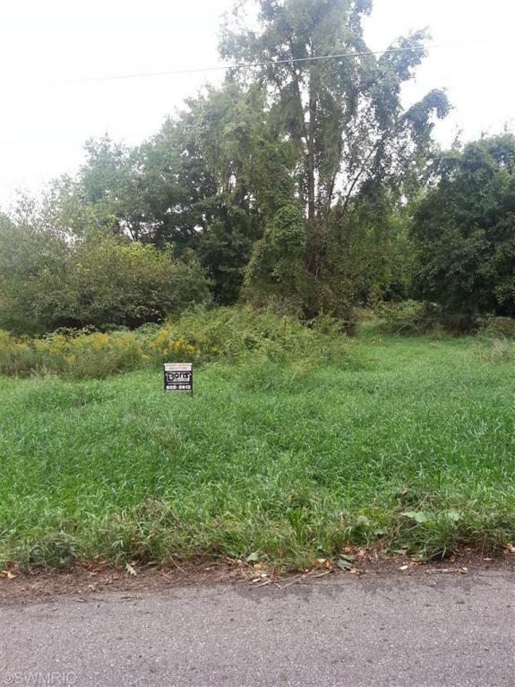 E B Avenue Par B, Richland, MI 49083 (MLS #17050422) :: Matt Mulder Home Selling Team