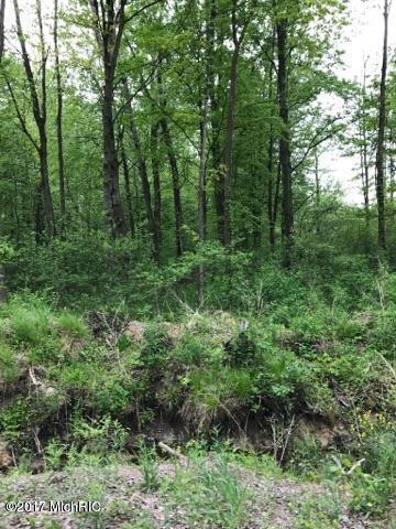 0 Cee Cook Lane Lot 30, Ravenna, MI 49451 (MLS #17058167) :: Carlson Realtors & Development