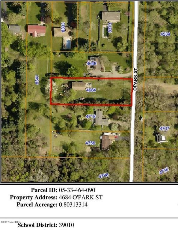 4684 O'park, Kalamazoo, MI 49009 (MLS #17058771) :: Matt Mulder Home Selling Team