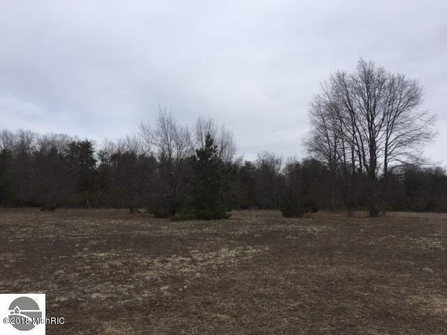 Psutka Road, Thompsonville, MI 49683 (MLS #18003573) :: Carlson Realtors & Development
