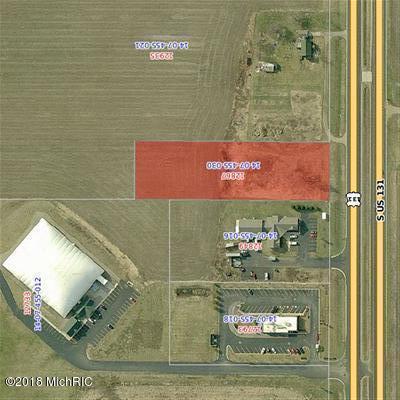 12867 Us 131, Schoolcraft, MI 49087 (MLS #18008438) :: Carlson Realtors & Development