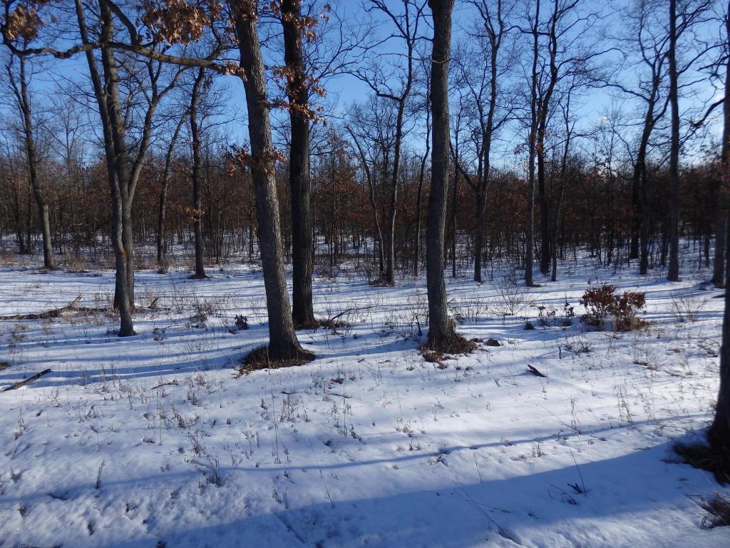 9.5 Acres Eastlake Rd - Photo 1