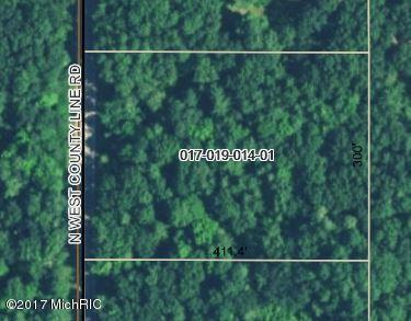 0 W County Line, Sand Lake, MI 49343 (MLS #18010229) :: JH Realty Partners