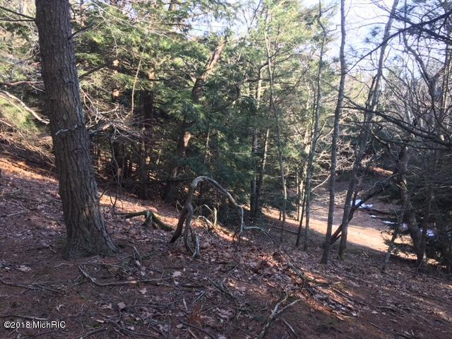 Lot 7 Timber Lane, Shelby, MI 49455 (MLS #18014990) :: JH Realty Partners