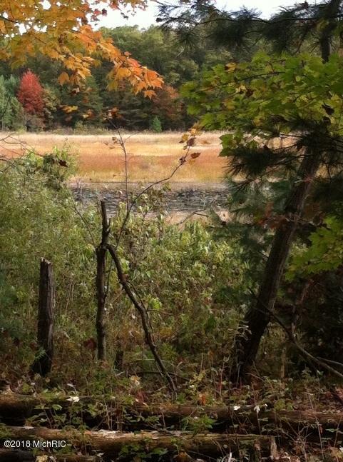 E White Lake Drive, Twin Lake, MI 49457 (MLS #18017079) :: Carlson Realtors & Development