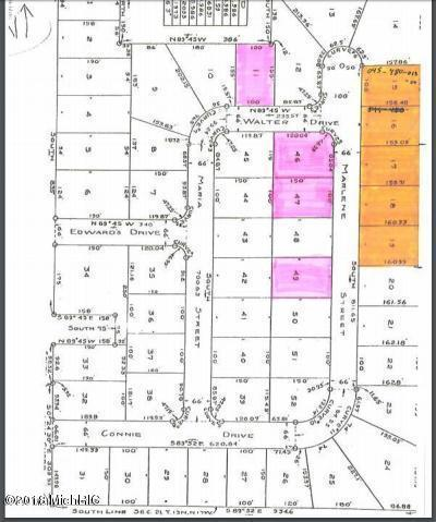 V/L Marlene Lots:15-19, 11,, Rothbury, MI 49452 (MLS #18017240) :: Deb Stevenson Group - Greenridge Realty
