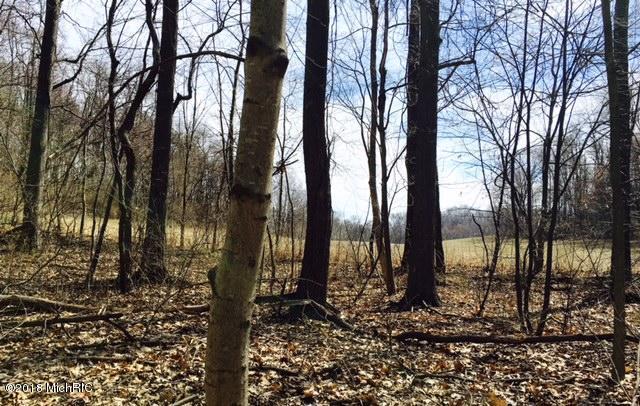 58141 Oak Drive, Three Rivers, MI 49093 (MLS #18019275) :: Deb Stevenson Group - Greenridge Realty