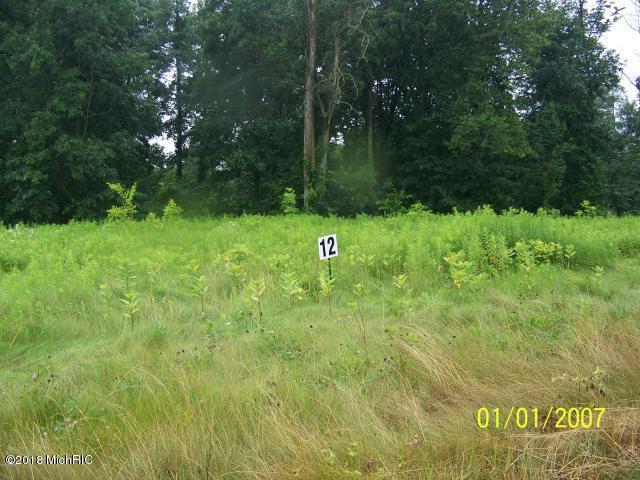 V/L Huyck Lake Lane Lot 13, Marcellus, MI 49067 (MLS #18020268) :: Deb Stevenson Group - Greenridge Realty