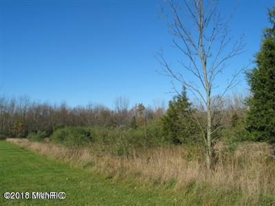 Lot E 1310 Blue Star, South Haven, MI 49090 (MLS #18020522) :: Carlson Realtors & Development