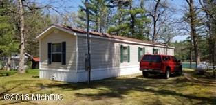 4966 S Jeanne Drive, Baldwin, MI 49304 (MLS #18022711) :: Carlson Realtors & Development