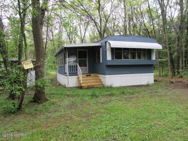 905 S Pine Avenue, White Cloud, MI 49349 (MLS #18023048) :: Deb Stevenson Group - Greenridge Realty