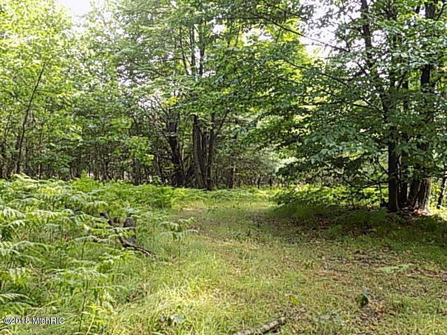 River Road, Evart, MI 49631 (MLS #18024581) :: 42 North Realty Group