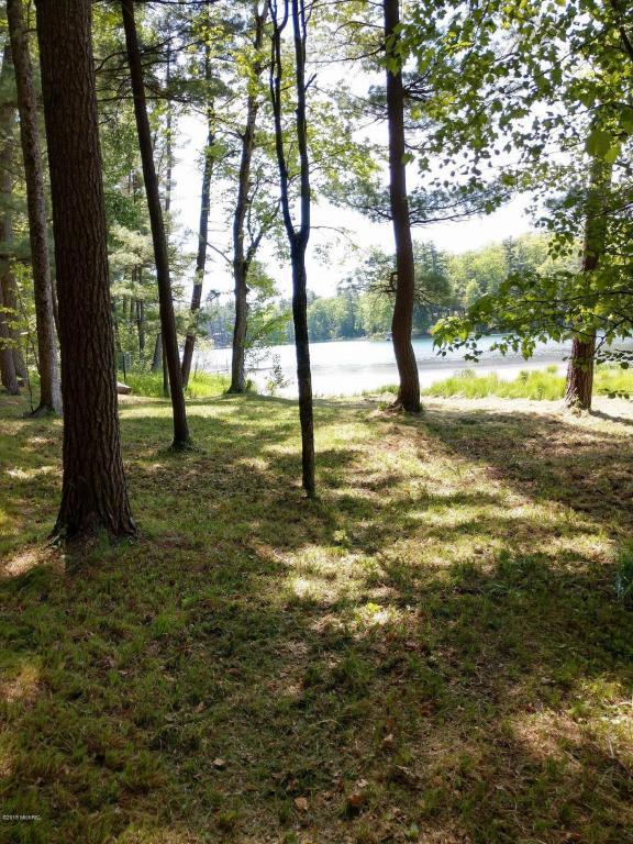 4691 S Putnam Lake Drive, Baldwin, MI 49304 (MLS #18024869) :: 42 North Realty Group