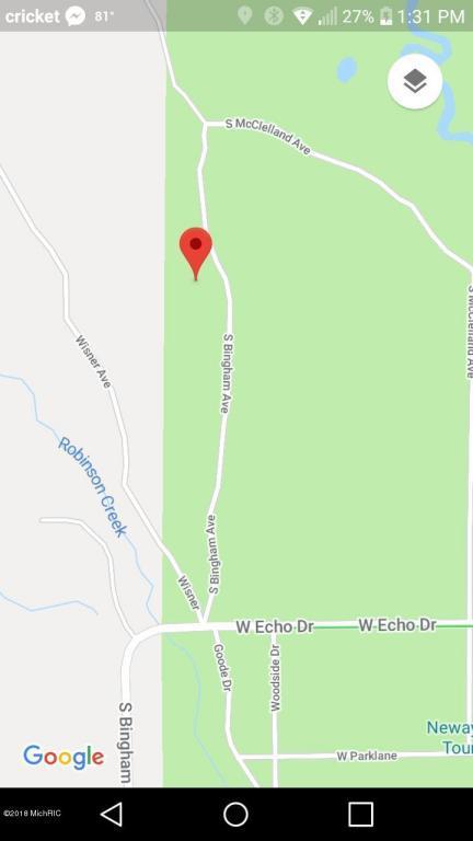 387 S Bingham Avenue, White Cloud, MI 49349 (MLS #18027393) :: Carlson Realtors & Development