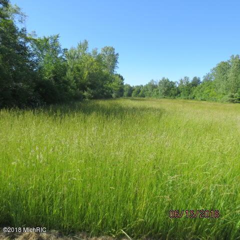 1845 Farmer Avenue, Benton Harbor, MI 49022 (MLS #18027683) :: 42 North Realty Group