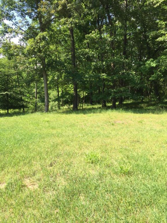 Trails End Road Parcel 10, Middleville, MI 49333 (MLS #18027778) :: Matt Mulder Home Selling Team