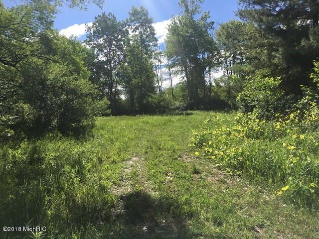 5051 18 Mile Road NE C, Cedar Springs, MI 49319 (MLS #18029852) :: 42 North Realty Group