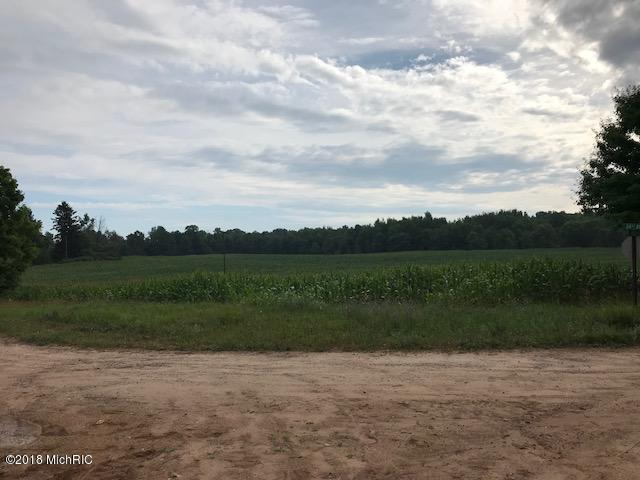 V/L-Lot A W Hayes Road, Shelby, MI 49455 (MLS #18033480) :: Carlson Realtors & Development