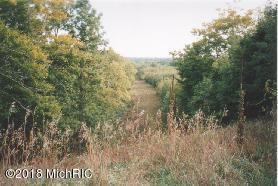 River Rd, Manistee, MI 49660 (MLS #18036697) :: CENTURY 21 C. Howard