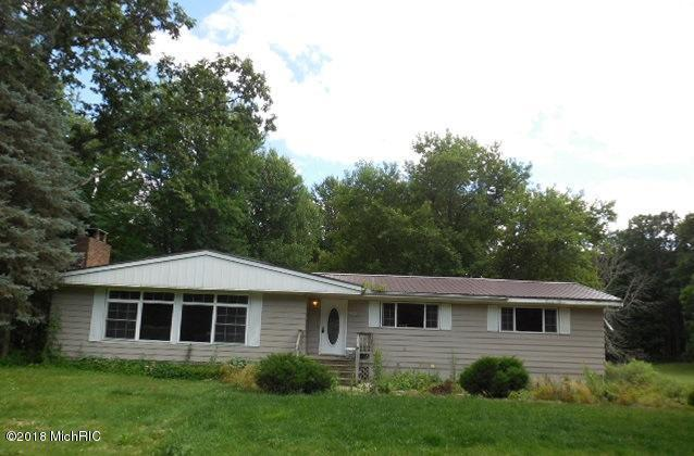 9421 W Howard City Edmore, Lakeview, MI 48850 (MLS #18039595) :: JH Realty Partners