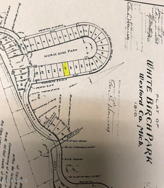 Lot 31 White Birch Lane, Cadillac, MI 49601 (MLS #18043508) :: Deb Stevenson Group - Greenridge Realty