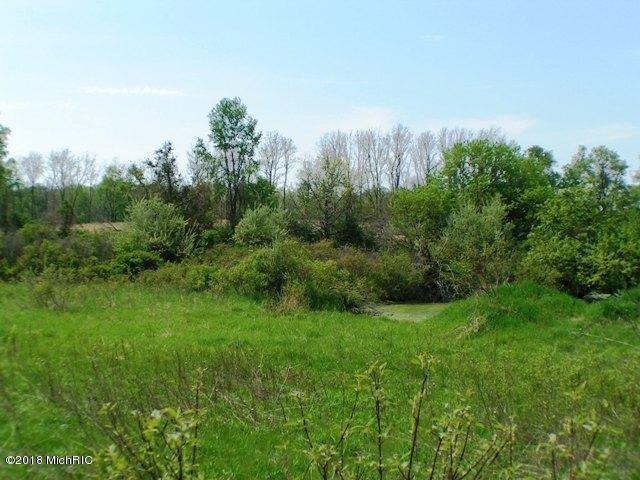 4315 Sayles Road Parcel 'A', Ionia, MI 48846 (MLS #18043513) :: Deb Stevenson Group - Greenridge Realty