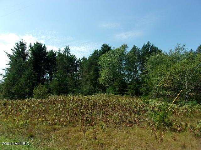 3 Acres Us 31 Highway, Manistee, MI 49660 (MLS #18043769) :: JH Realty Partners