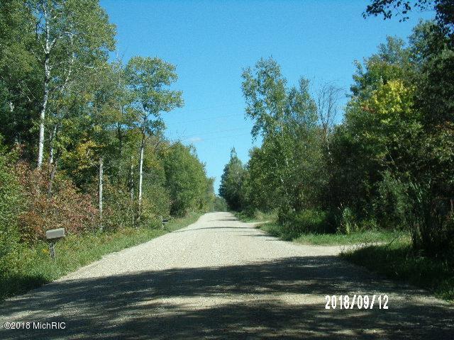 0000 Mackinaw Trail, Tustin, MI 49688 (MLS #18044530) :: Deb Stevenson Group - Greenridge Realty
