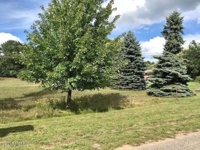 1114 N Jebavy Drive, Ludington, MI 49431 (MLS #18044602) :: Deb Stevenson Group - Greenridge Realty