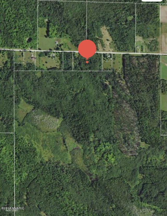 V/L Buzzels Road, Onaway, MI 49765 (MLS #18045659) :: Matt Mulder Home Selling Team