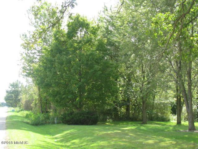V/L Division Avenue, Wayland, MI 49348 (MLS #18047557) :: Deb Stevenson Group - Greenridge Realty