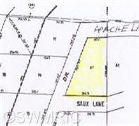 Lot 87 Apache Lane, Big Rapids, MI 49307 (MLS #18048911) :: Deb Stevenson Group - Greenridge Realty