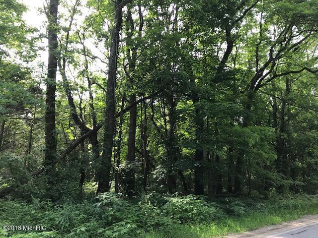 V/L S Payne Lake Road, Wayland, MI 49348 (MLS #18048975) :: Deb Stevenson Group - Greenridge Realty