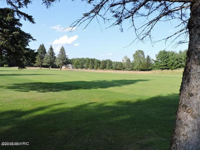 7842 Red Fox Road, Canadian Lakes, MI 49346 (MLS #18051256) :: Deb Stevenson Group - Greenridge Realty