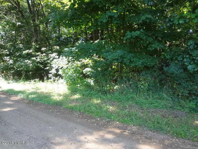 Twin Shores Road, Dowagiac, MI 49047 (MLS #18051681) :: Deb Stevenson Group - Greenridge Realty