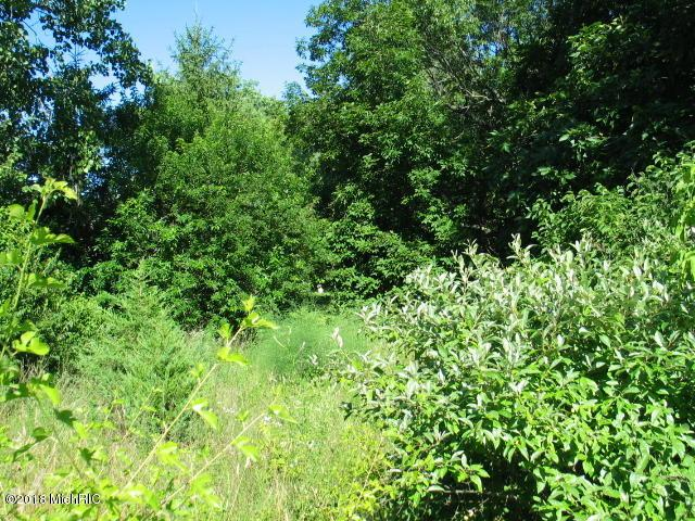 11059 Brittany Drive, Cement City, MI 49233 (MLS #18052524) :: Deb Stevenson Group - Greenridge Realty