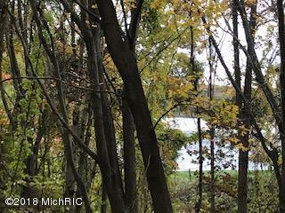 00 N Bear Lake Road, Muskegon, MI 49445 (MLS #18053618) :: Matt Mulder Home Selling Team
