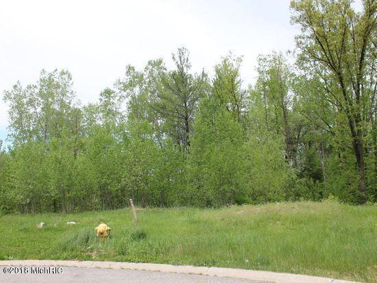 7726 Lake Circle Drive, Belding, MI 48809 (MLS #18053646) :: Deb Stevenson Group - Greenridge Realty